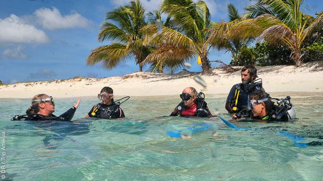 Voyage plongée aux Grenadines