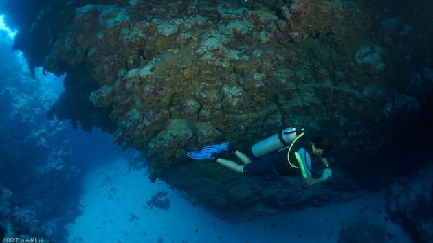 Séjour plongée à Dahab en Egypte