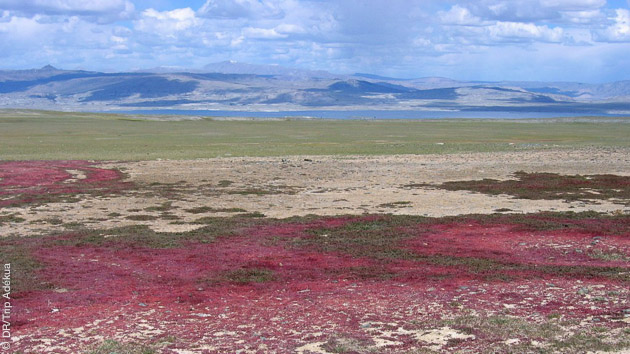 Séjour trekking en Mongolie