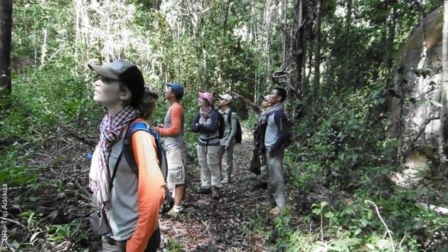trek au cambodge dans la forêt