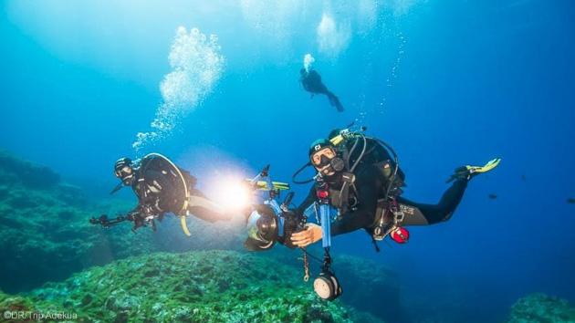 Découvrez les plus belles espèces marines des Açores