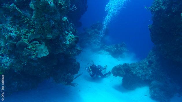 Vacances plongées aux Bahamas, sur Cat Island, en famille