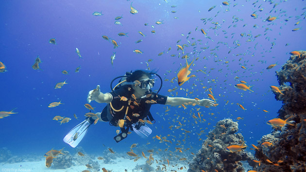 Votre séjour plongée à Dahab avec hôtel et 10 immersions