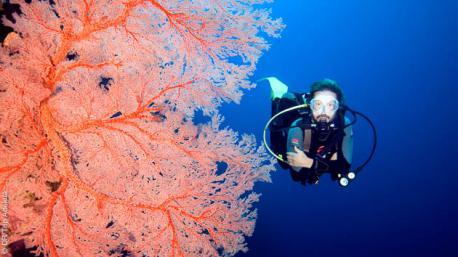 Séjour plongée et découverte des fonds multicolores au Vietnam