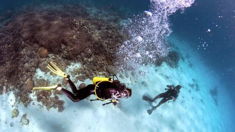 Un séjour plongée au Mozambique, dans le respect de l'environnement