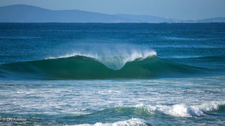 Tout commence à Old Bar pour votre trip surf en Australie