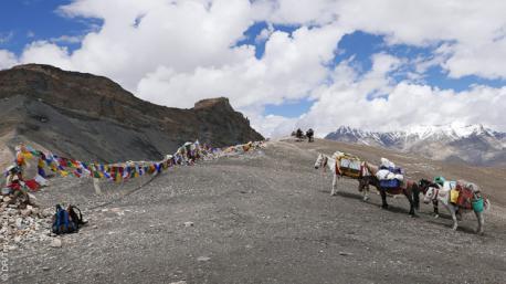 Découvrez les sentiers pédestres du Ladakh pour lors de ce circtui trekking avec bivouac