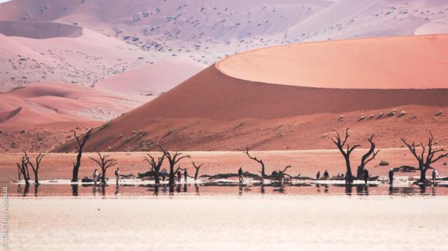 Paysages de rêves, camaieu d'ocres dans le désert pour ce circuit trek dans le Damarland (Namibie)