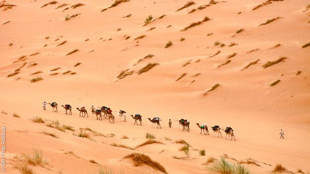 Votre séjour trekking en Mauritanie à la découverte de l'Erg Warane