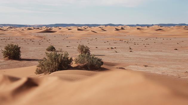 Un séjour trekking de rêve dans le désert du Maroc