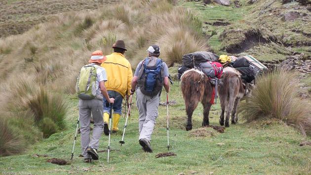 Une randonnée sur le Chemin des Incas en Equateur